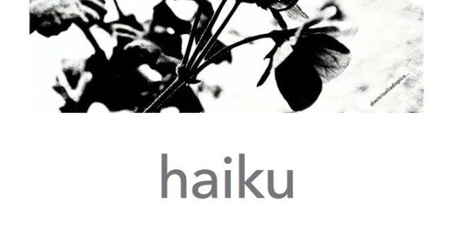 """Βραδιά ιαπωνικής ποίησης στις """"12 Ακροπόλεις"""""""